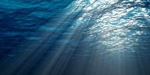 Costa Crociere Foundation: al via i 4 progetti selezionati a sostegno di iniziative di solidarietà e tutela dell'ambiente marino
