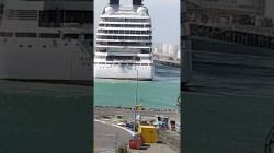 VIDEO: Nuova Zelanda, Seabourn Encore strappa gli ormeggi e scontra una nave da carico