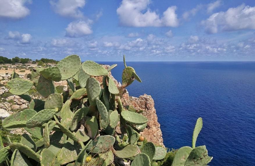 Il 'ritmo delle Baleari' a bordo di Costa neoRiviera. Reportage di viaggio
