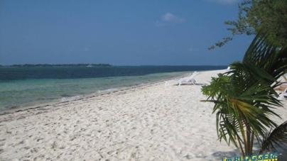 03 maldive destinazione paradiso - 3 8