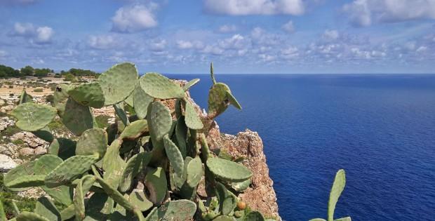 Il 'Ritmo delle Baleari' a bordo di Costa neoRiviera. Reportage di Viaggio: Ibiza e Formentera