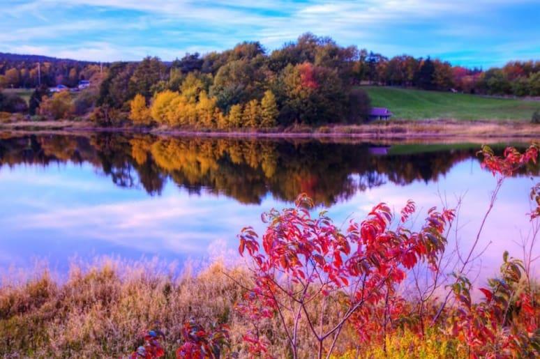 Foliage, Canada